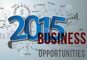 peluang usaha 2015